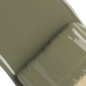 Fusion Mineral Paint-Gratis Sample-Bayberry