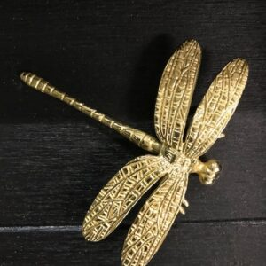 Kastknop Libelle large