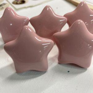 Kastknop - Ster- Roze