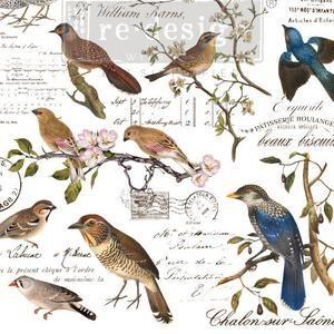 Re-Design-Decoratie-Transfers- Postal Birds