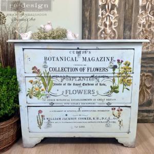 Redesign - Decoratie - Transfer - Botanical Magazine