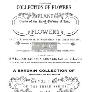 Redesign - Decoratietransfer - Botanical magazine