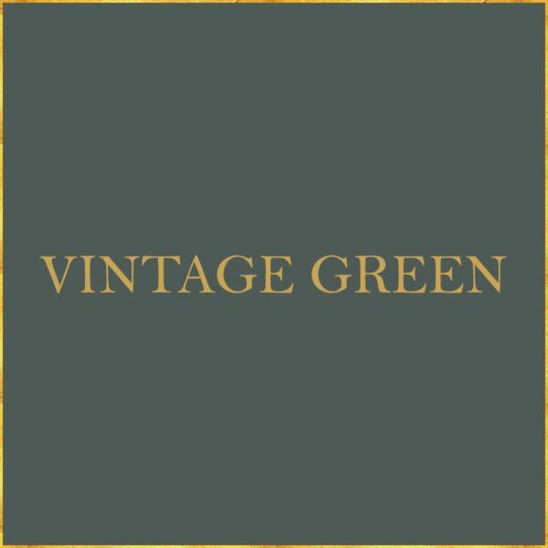 PTMD Verf - Vintage Green